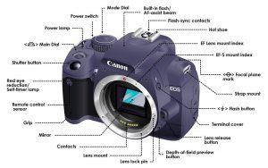 cámara camera dslr